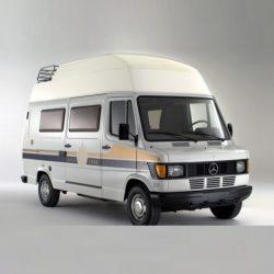T1 1981-1995