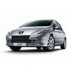 307 2005-2008