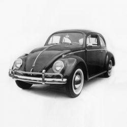 Beetle 1949 ->>
