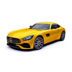 AMG GT / GTC / GTS 2014 ->>