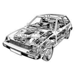 Colt 1978-1984